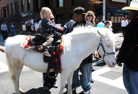 Illegal_horse_ride